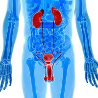 Identifique rapidamente um câncer urológico